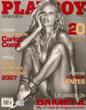 2007 adult january magazine playboy