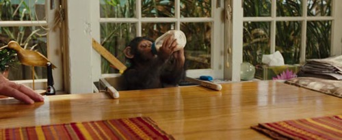 Geneza planety małp / Rise of the Planet of The Apes (2011) PL.BRRip.XviD-BiDA / Lektor PL